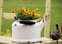 Creative Container Gardening - Diy Talent Pink Hammer