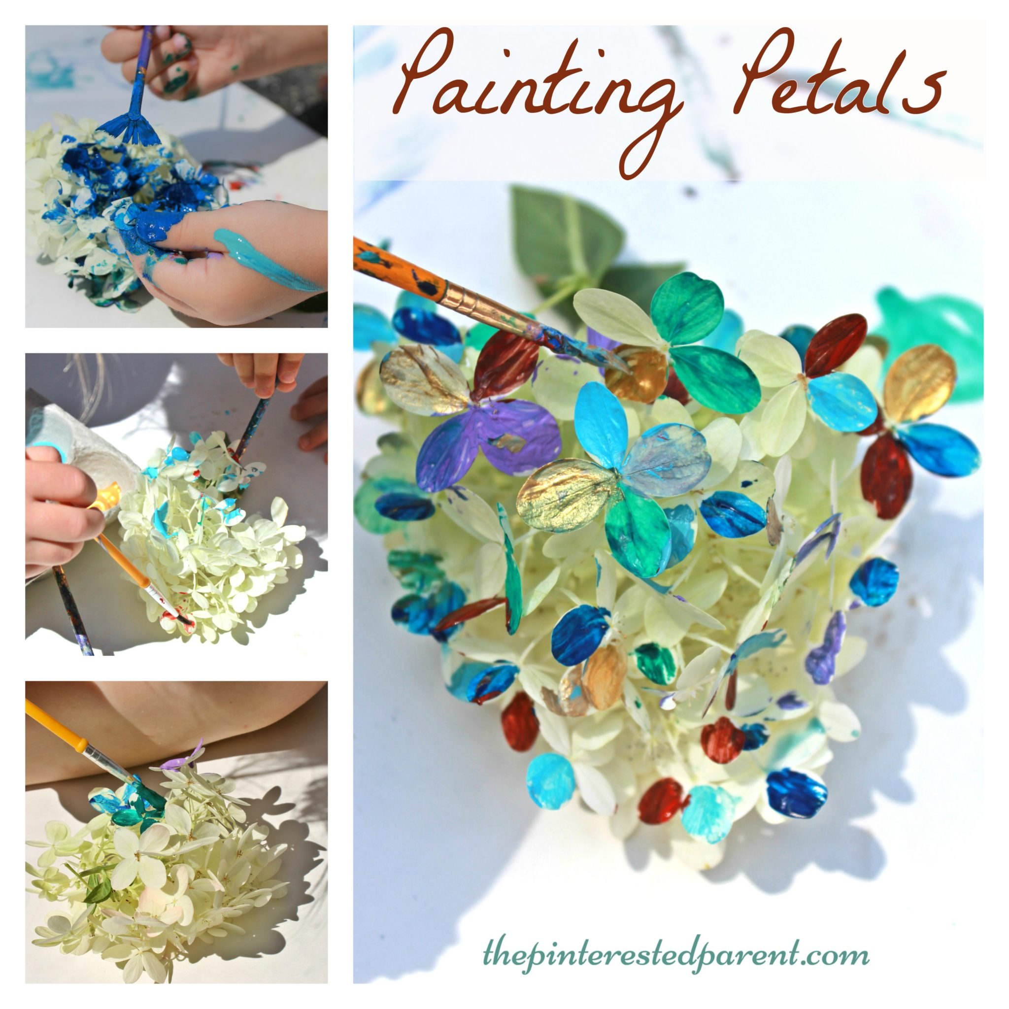 Painting Petals Activity The Pinterested Parent