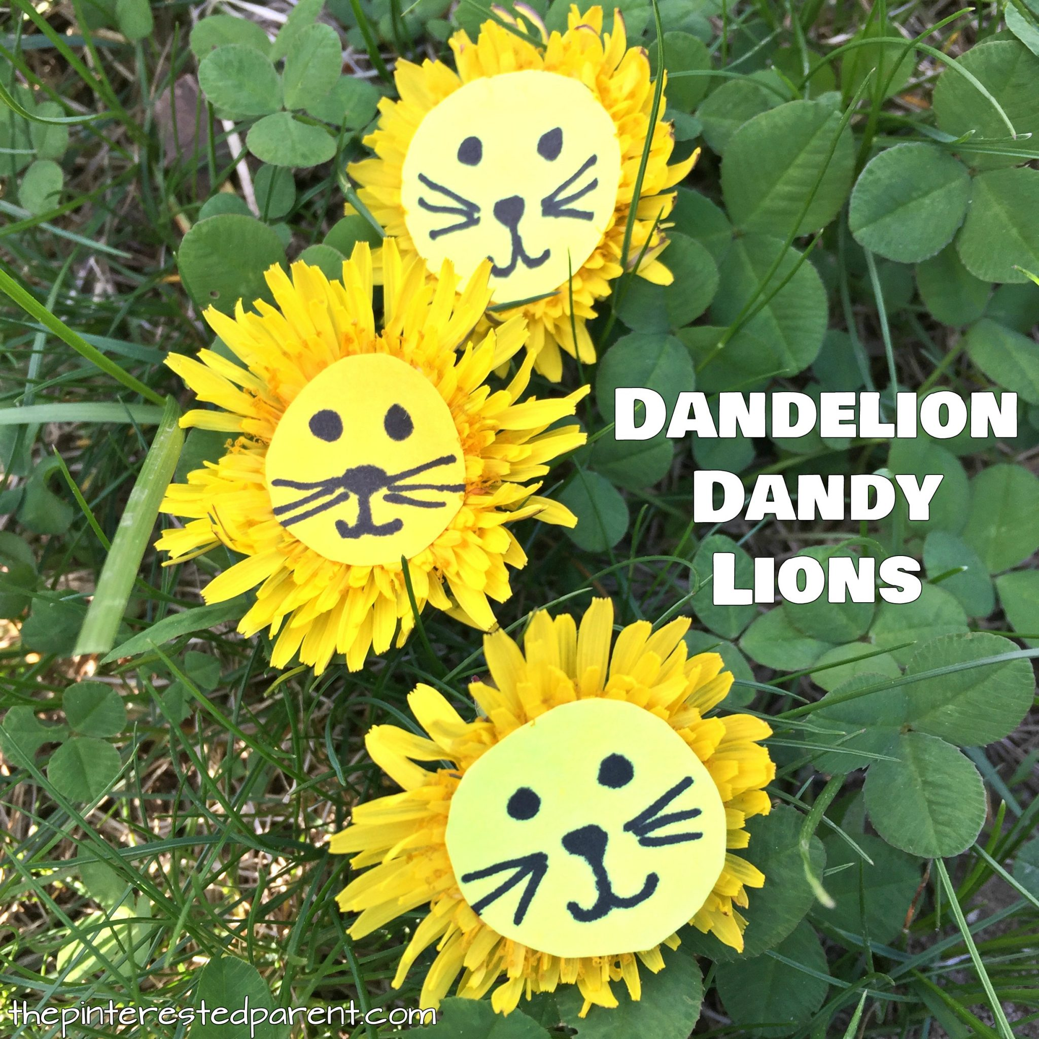 Dandelion lions nature craft the pinterested parent dandelion lions easy nature arts and crafts for kids flower craft ideas for the mightylinksfo