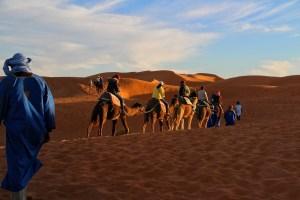 sahara desert camel trek morocco
