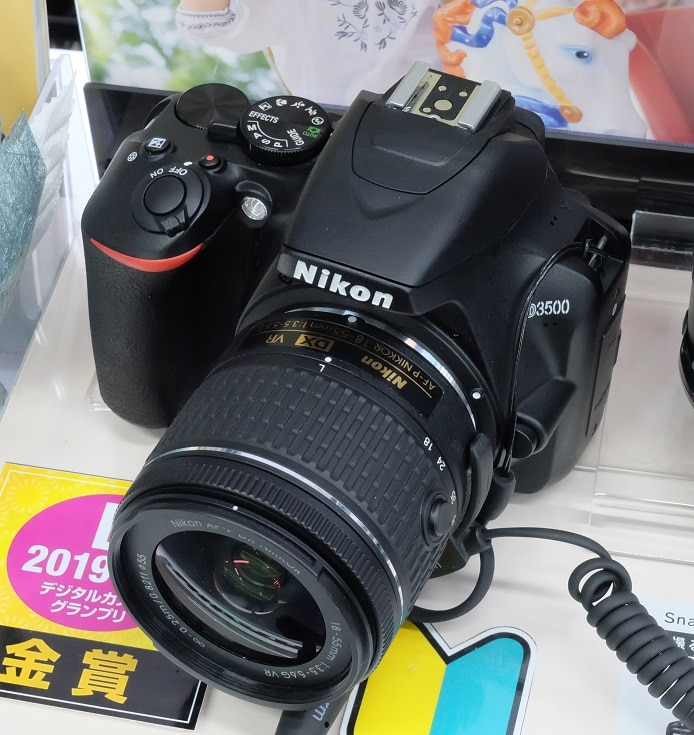 Best camera for beginners Nikon D3500