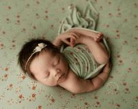 Dewdrops Newborn