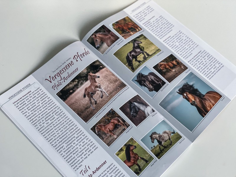Publication in Der Kutschbock 04/2020