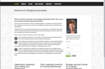 Website Design for Bridging Associates