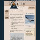 Website Design, E-Commerce, Online Marketing for The Cogent Executive
