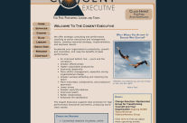 Website Design, E-Commerce, Online Marketing for The Cogent Executive