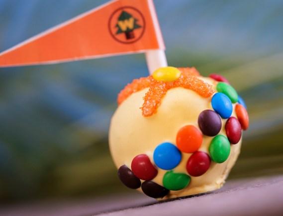 Russel Cake Pop at Pixar Fest