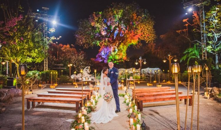 Couples Can Now Get Married in Front of the Tree of Life