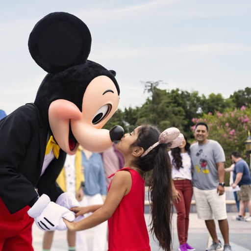 Disneyland Resort Announces Limited-Time Offers for 2020