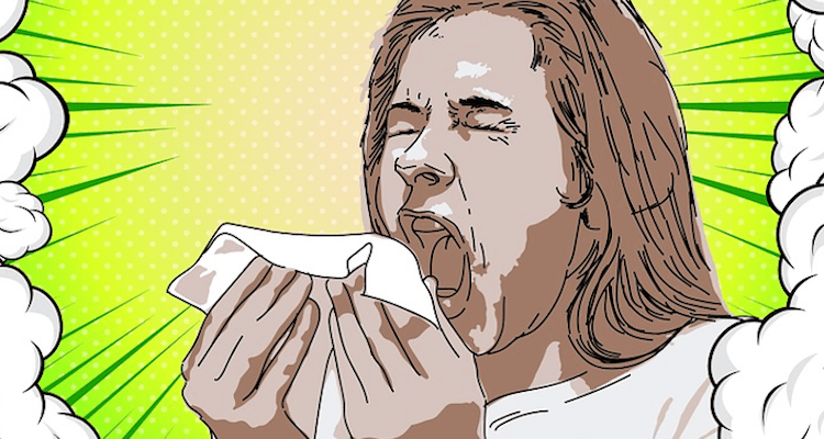 Why do we say 'bless you' when someone sneezes?