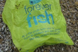 'Forever' is indeed the key word here. How often do you consider what actually happens to plastic once you're finished with it? Even if this plastic bag breaks down into smaller pieces, where do they end up? It seems difficult to find a clear answer, but research suggests that rather than decomposing, they continue becoming smaller and small pieces. Some interesting reading: http://www.blueridgeoutdoors.com/go-outside/how-long-does-it-really-take-a-plastic-grocery-bag-to-degrade/ http://news.nationalgeographic.com/news/2009/08/090820-plastic-decomposes-oceans-seas.html