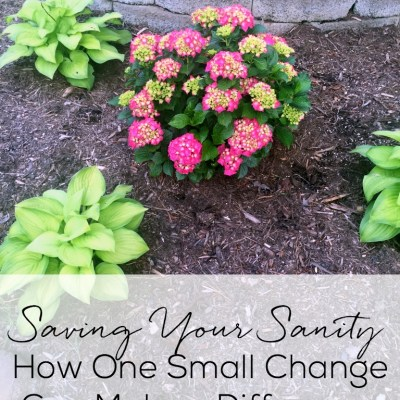 Saving Your Sanity–How One Small Change Can Make a Difference