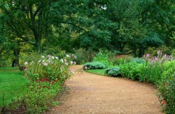garden-path-59151_1280