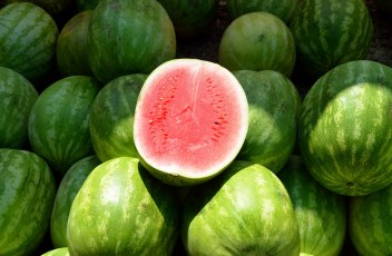 water-melon-1652093_1280
