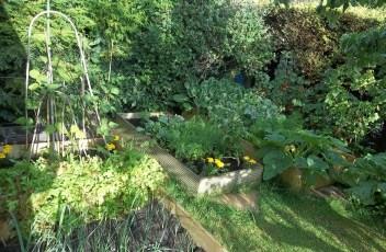garden-2149259_1280