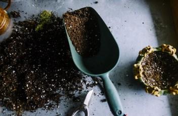 gardening-690940_1280