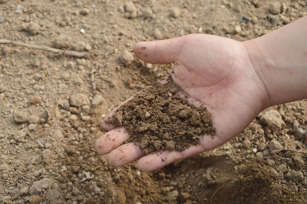 pH Soil Garden
