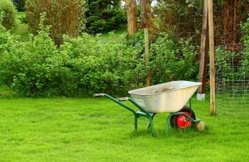 garden-2358430_640