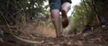 Planthunter Benefits Of Barefoot Wandering