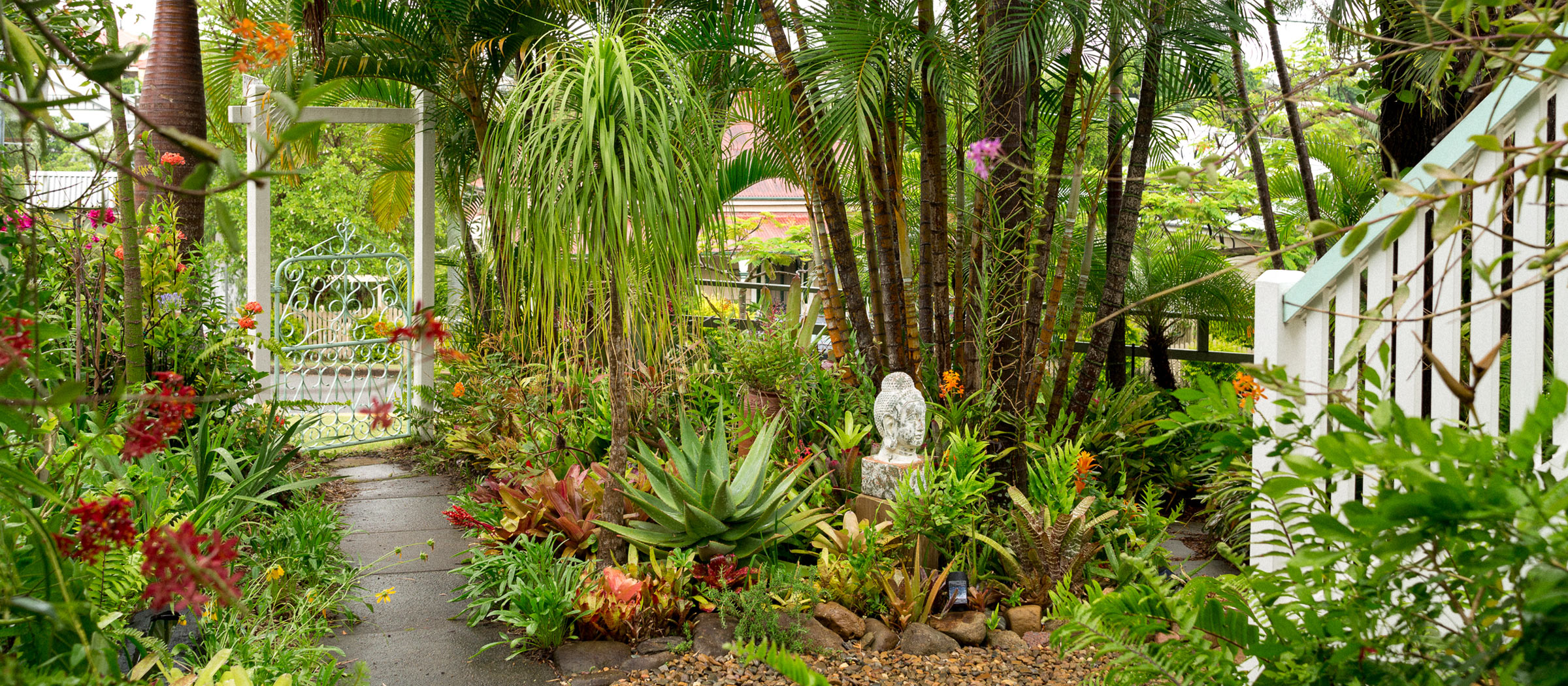 A Tropical Brisbane Garden Wonderland - The Planthunter