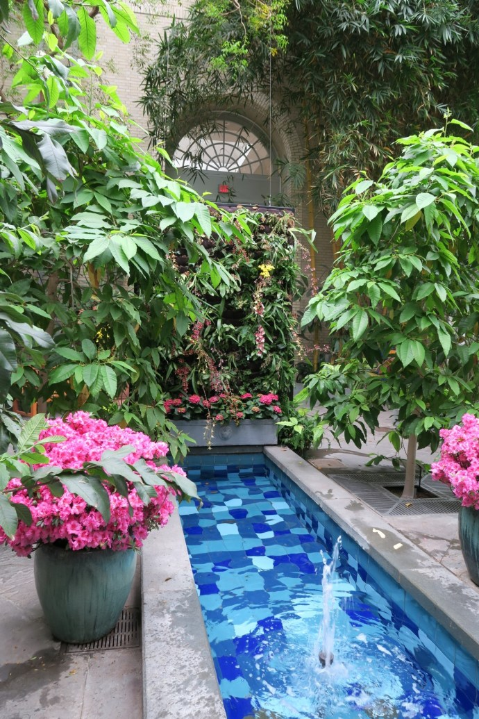 Water Garden_USBG