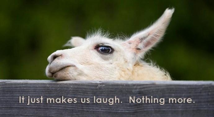 laughingllama