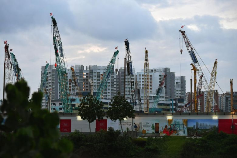 Singapore tidying up last patch of rainforest.
