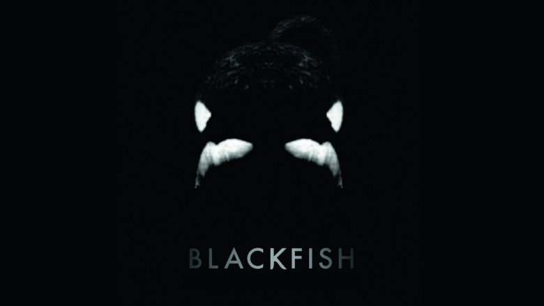 Blackfish 2