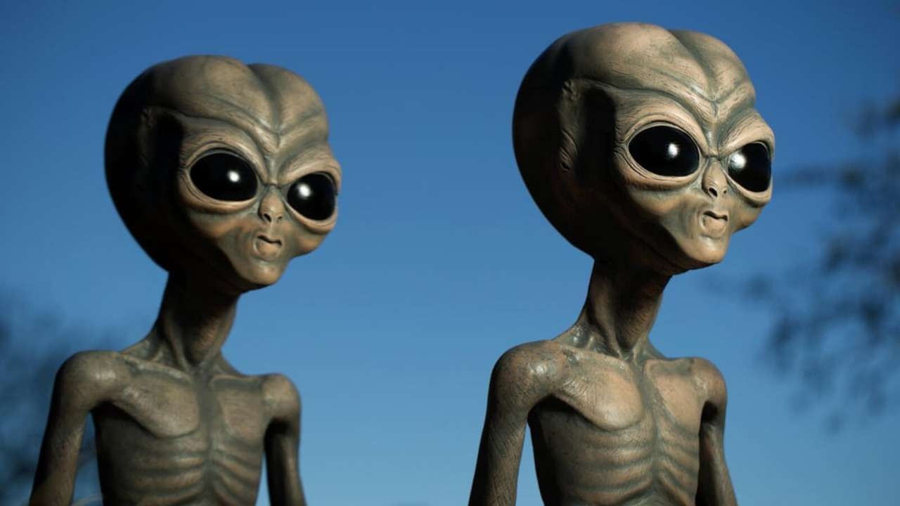 Aliens admit