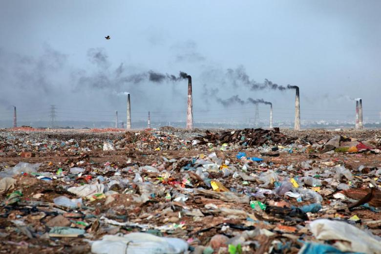 Environmental Disclaimer
