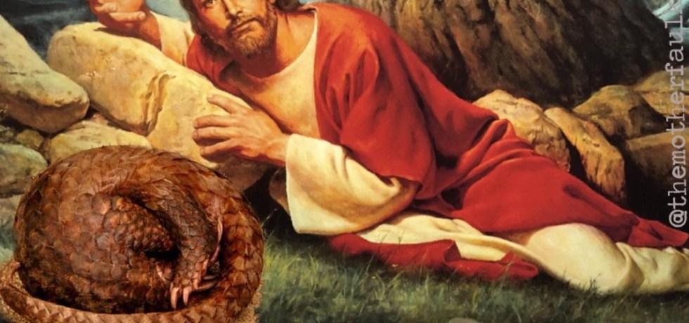 Jesus in