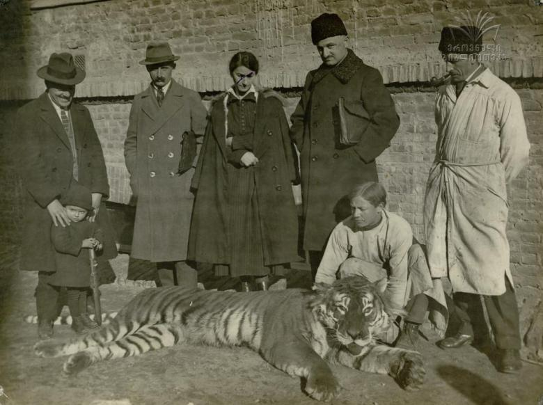 What Happened to the Caspian Tiger?