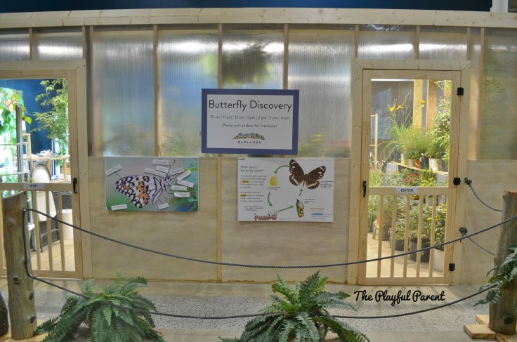 BADLANDS- BUTTERFLY HOUSE.jpg