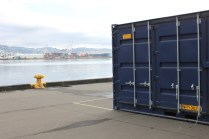 Container and Wellington Harbour