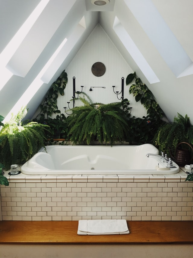 A tub surrounded by plants and greenery