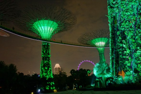 Super Trees and Singapore Flyer
