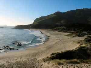 Ocean Beach, north of Bream Head, Northland, New Zealand (Photo Credit: gadfium, via Wikimedia Commons).