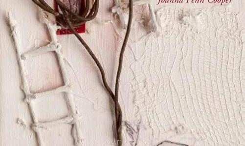 REVIEW: JOANNA PENN COOPER – WHAT IS A DOMICLE