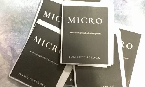 REVIEW: MICRO – JULIETTE SEBOCK (NIGHTINGALE & SPARROW PRESS)