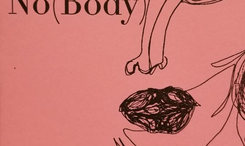 REVIEW: NO(BODY) – JOANNA VALENTE (MADHOUSE PRESS)