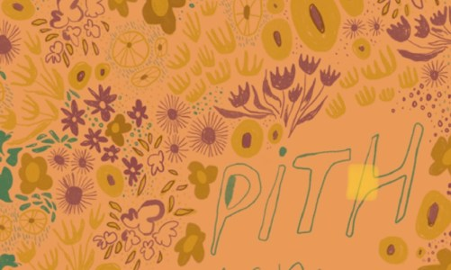REVIEW: PITH – TRACY FUAD (NEWFOUND)