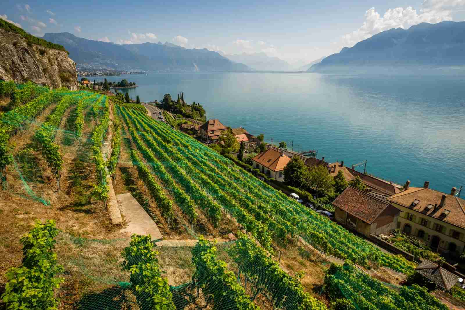 Overlooking the vineyards on the coast of Lake Geneva. (Photo by cdbrphotography / Getty Images