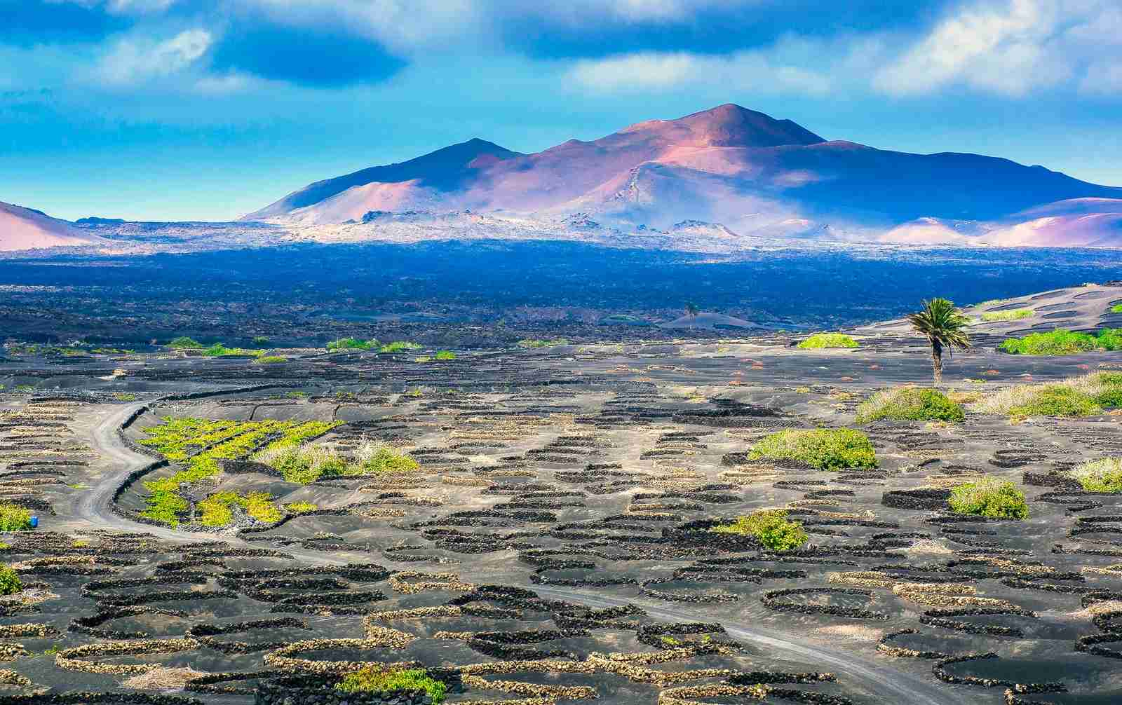 The Wine Valley of La Geria in Lanzarote. (Photo by Rott70 / Getty Images)
