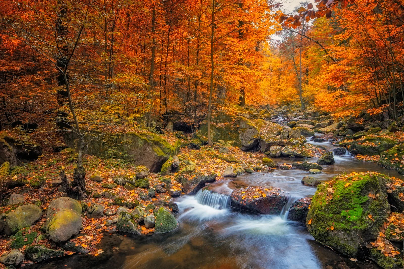 11 beautiful cities in Europe to admire autumn foliage