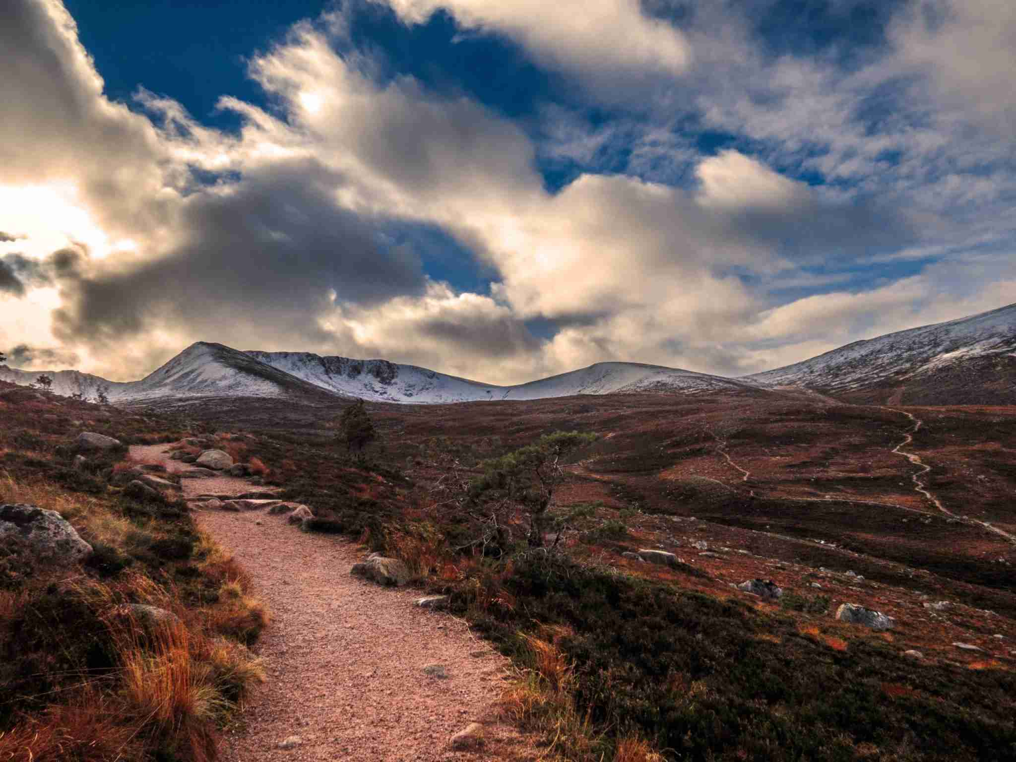 Views across the Cairngorms National Park. (Photo by VWB photos/Getty Images)
