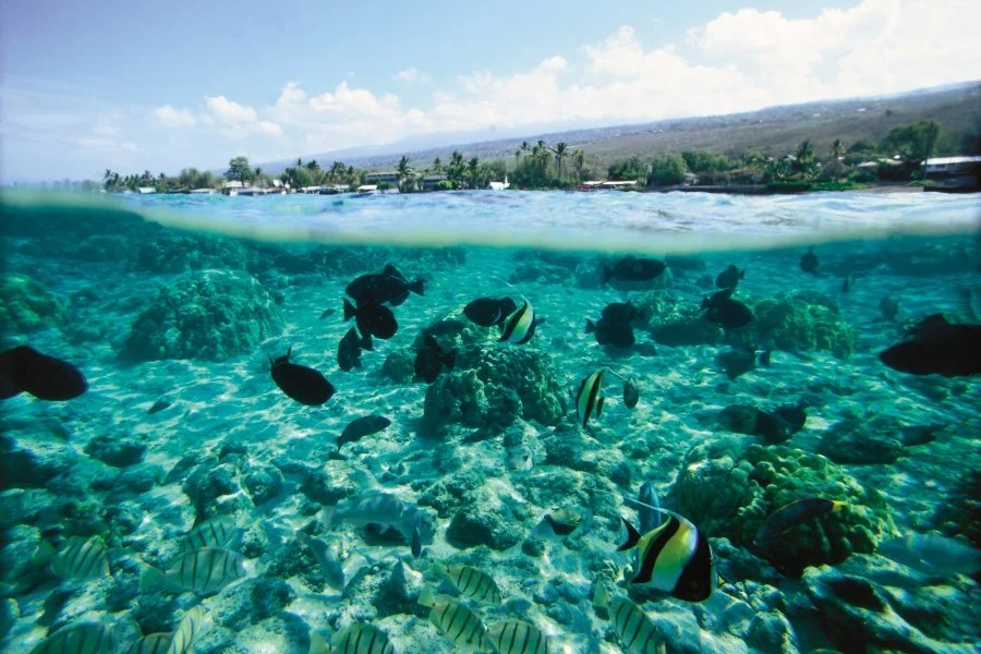 Destination of the Week: Hawaii, The Big Island – The