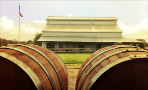 Rancho Ponte Vineyard is one of the newer wineries in the area.