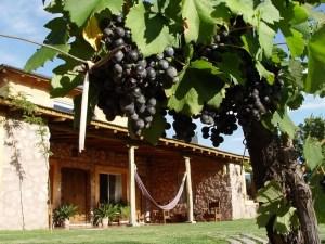 Finca de Adalgisa offers relaxing rooms with outdoor space.