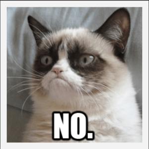 Perfectly said Grumpy Cat.