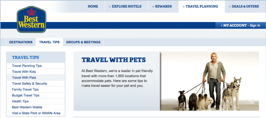 guide tips traveling with pets airline hotel policy roundup